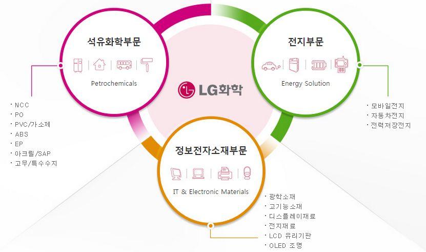 LG화학의 사업영역: 석유화학 부문, 전지 부문, 정보전자소재 부문