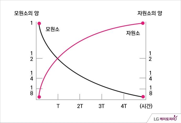 반감기의 그래프