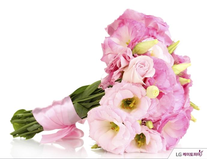분홍 장미 꽃다발