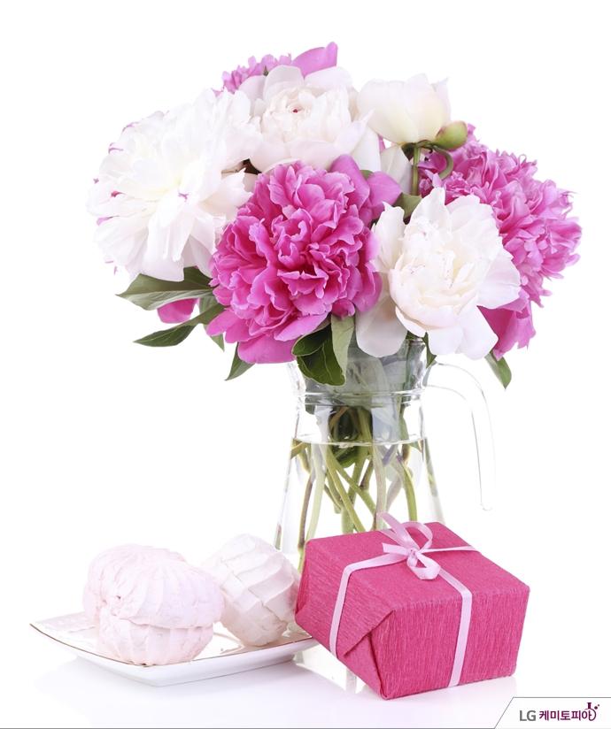 핑크색 꽃다발