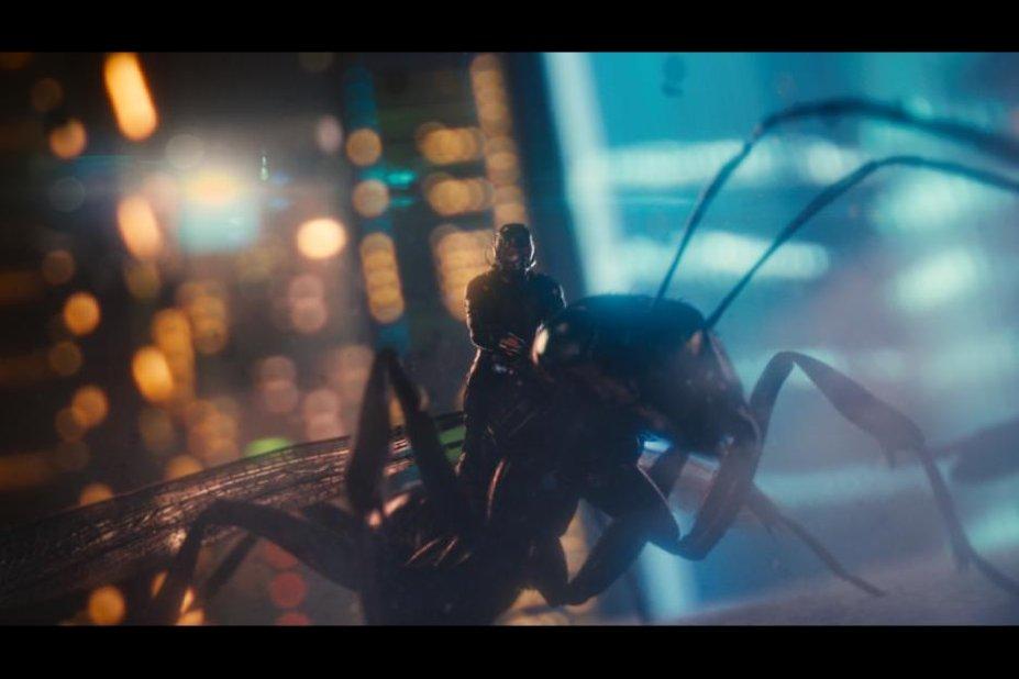 개미 위에 앉아있는 앤트맨