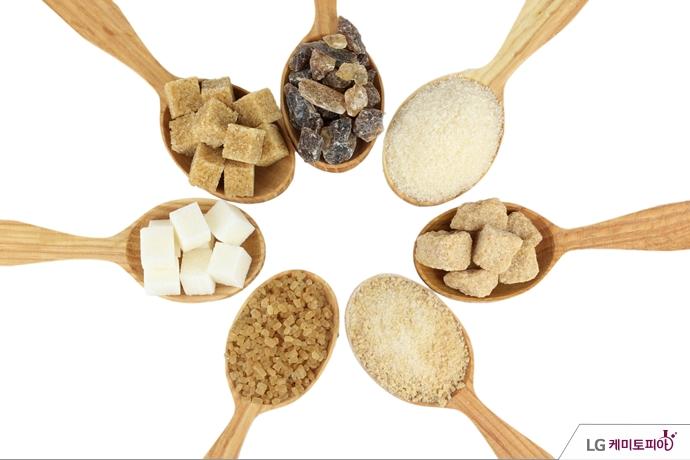 다양한 종류의 설탕