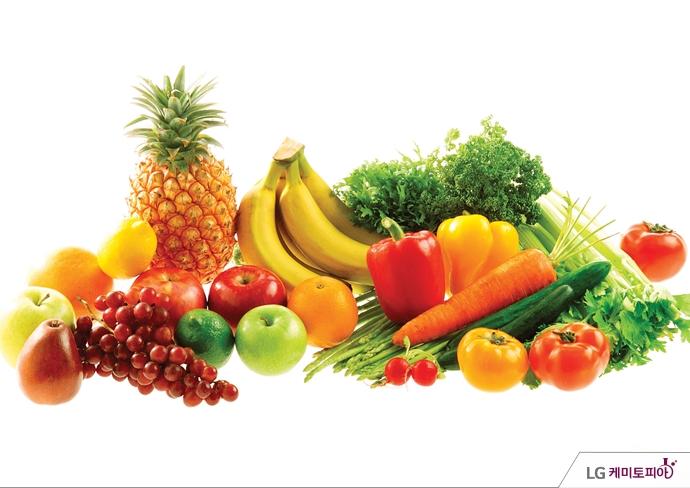 다양한 채소와 과일