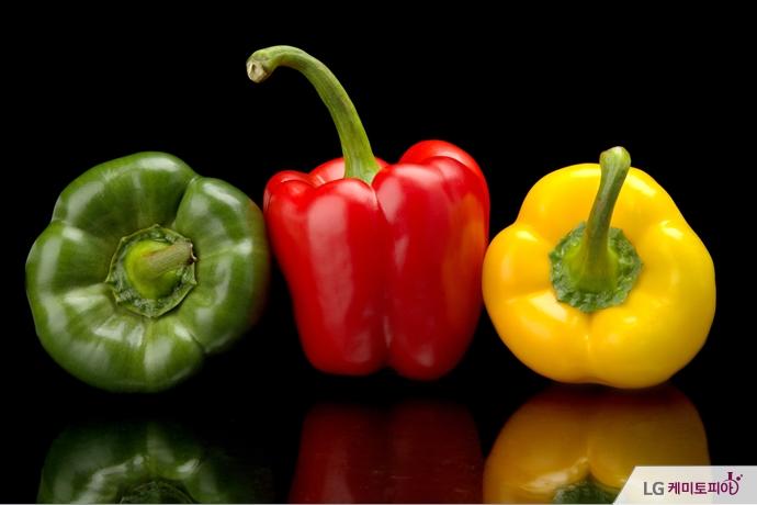 초록색, 빨간색, 노란색 파프리카