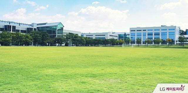 천연 잔디가 넓게 깔린 LG화학 대전 기술연구원 전경