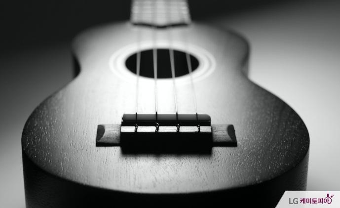 흑백의 기타 사진
