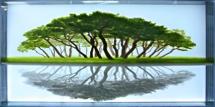 Ⓒ손봉채, 한국사립미술관협회 Korean Artist Project(www.koreanartistproject.com) 이주민 Migrants