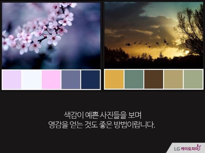 색감이 예쁜 사진들을 보며 영감을 얻는 것도 좋은 방법이랍니다.