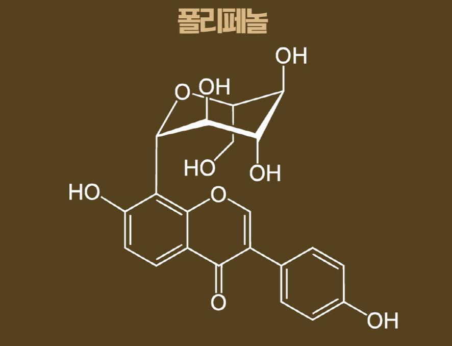 폴리페놀의 화학 구조