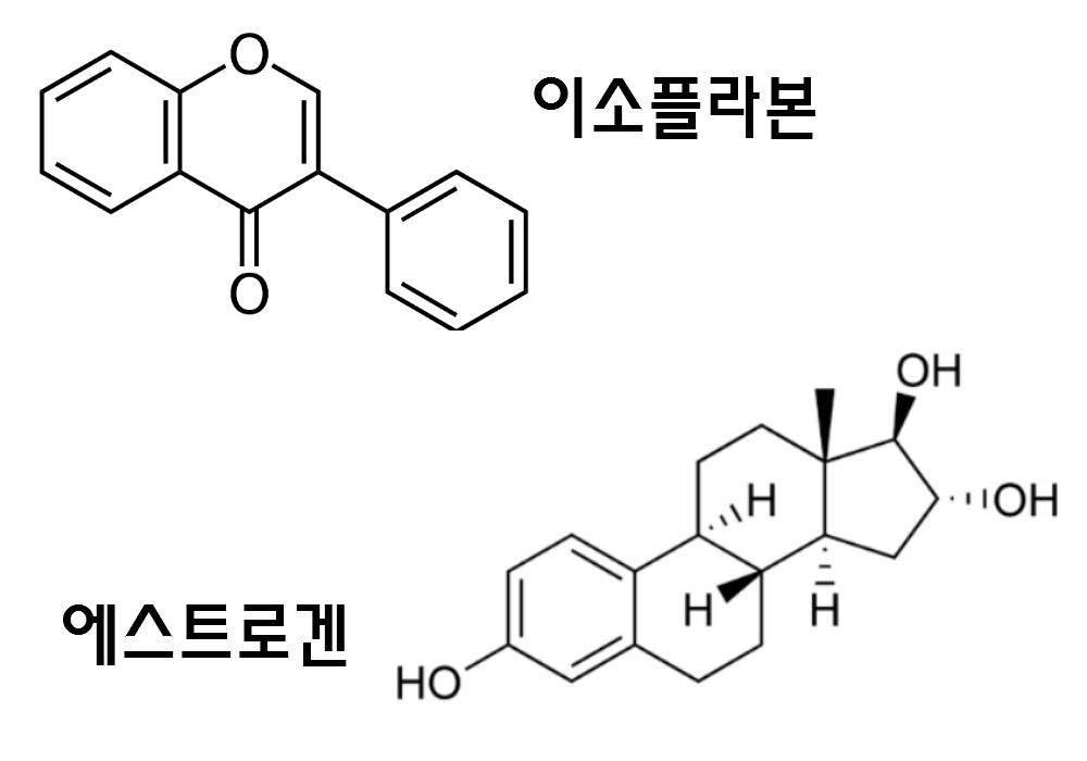 이소플라본과 에스트로겐 화학구조