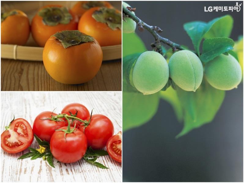 숙취에 좋은 과일들, (좌측 상단) 감, (좌측 하단) 토마토, (우측) 매실