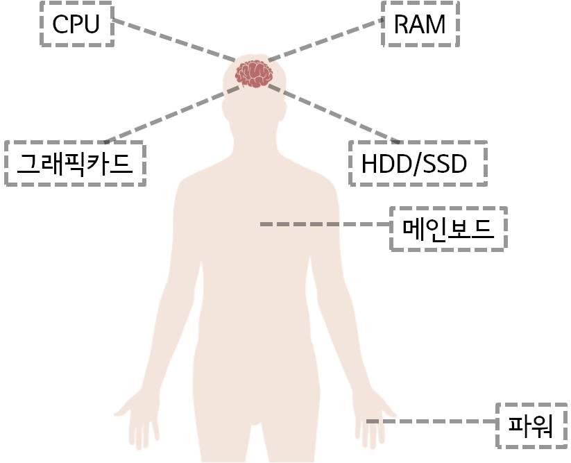 인체 vs 컴퓨터/ 머리=CPU, RAM, 그래픽카드, HDD, SSD/ 심장=메인보드/ 손=파워