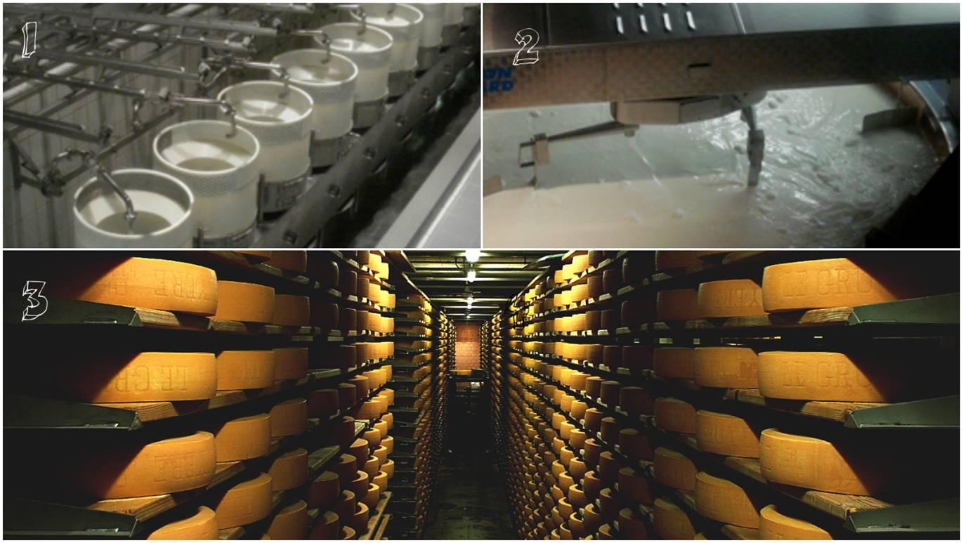 치즈 제조 과정 1. 우유 생산 2. 린넨 효소 배합 3. 치즈 발효