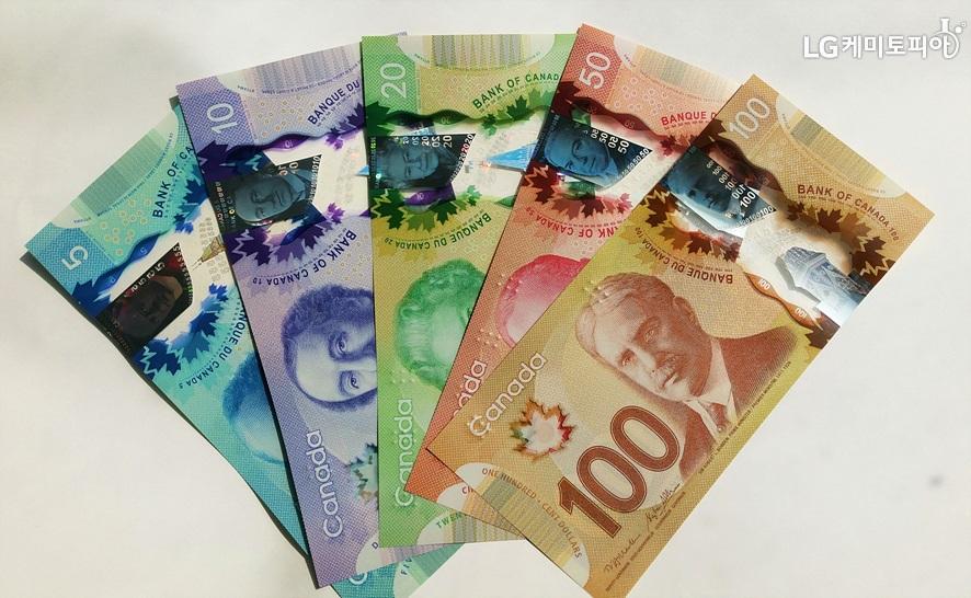 깨끗한 캐나다 5, 10, 20 50, 100달러 지폐들