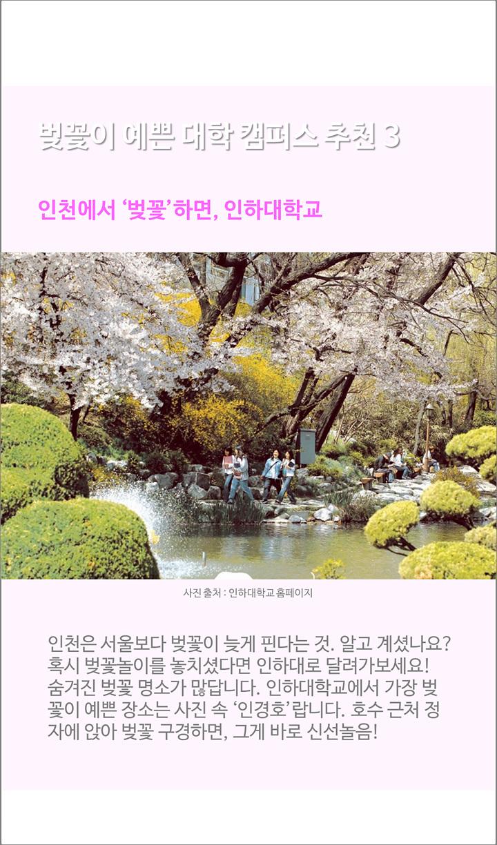 벚꽃이 예쁜 대학 캠퍼스 추천3. 인천에서 벚꽃하면 인하대학교-인천은 서울보다 벚꽃이 늦게 핀다는 것 알고 계시나요? 혹시 벚꽃놀이를 놓치셨다면 인하대로 달려가보세요. 숨겨진 벚꽃 ㅕㅇ소가 많답니다. 인하대학교에서 가장 벚꽃이 예쁜 장소는 사진 속 인경호랍니다. 호수 근처 정자에 앉아 벚꽃 구경을 하면 그게 바로 신선놀음!