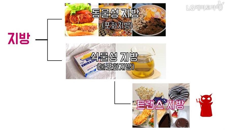 지방의 3가지 분류를 이미지로 보여주고 있다. 동물성 지방(포화지방), 식물성 지방(불포화지방), 트랜스 지방.