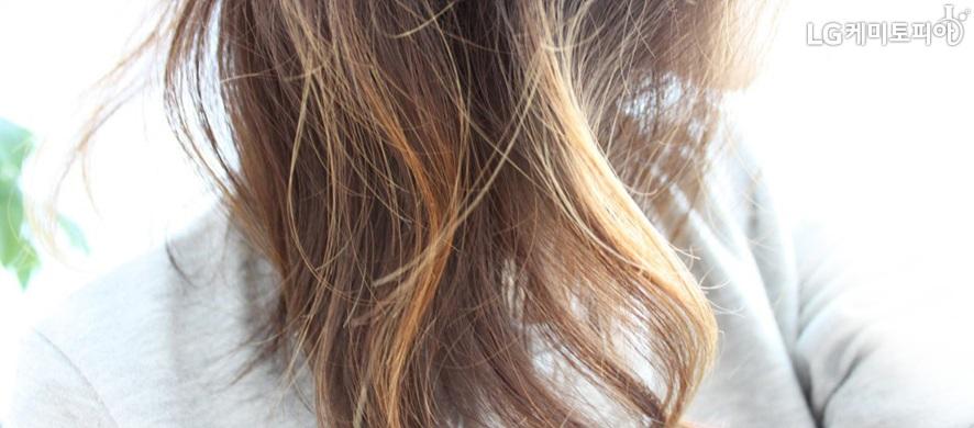 탈색된 머리카락 확대사진