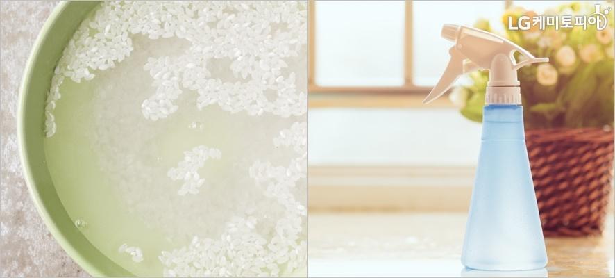 왼쪽엔 쌀뜨물 사진이 오른쪽에는 화분과 함께 분무기가 놓여있다.