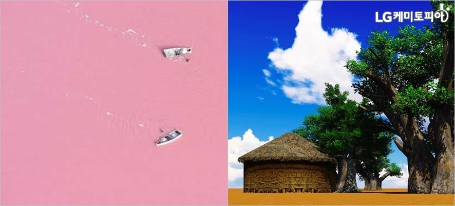 (왼쪽부터) 세네갈 레트바 호수 ⓒ레트바 공식 홈페이지, 바오밥 나무 초원 풍경