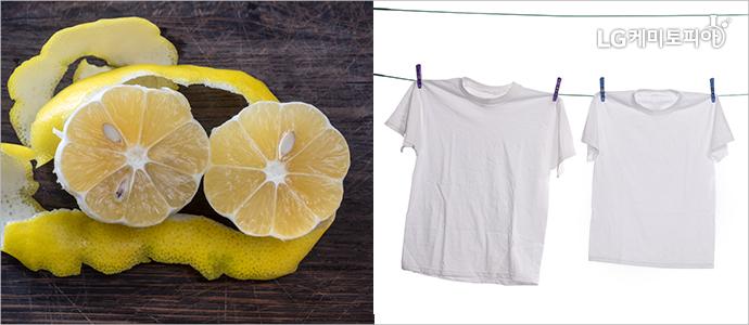 (좌)레몬과 레몬껍질, (우)빨래줄에 걸려있는 흰색 티셔츠 3장