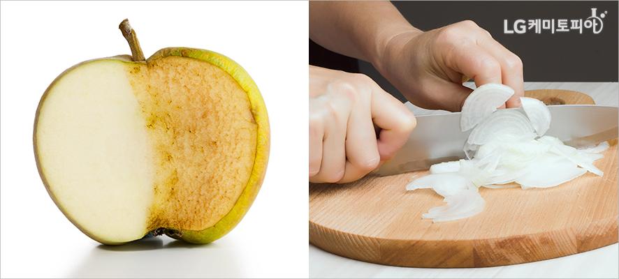 (좌)갈변한 사과 반쪽 단면,(우)도마 위에서 칼로 양파를 썰고 있다.