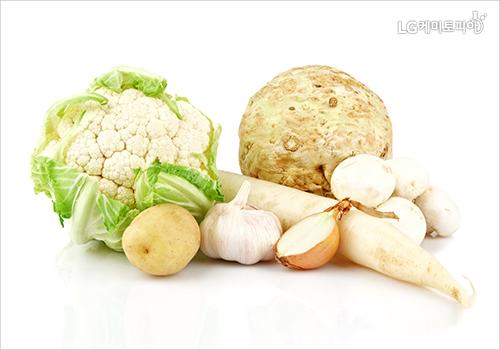 흰색의 양배추, 마늘, 양파, 마 등이 놓여있다.