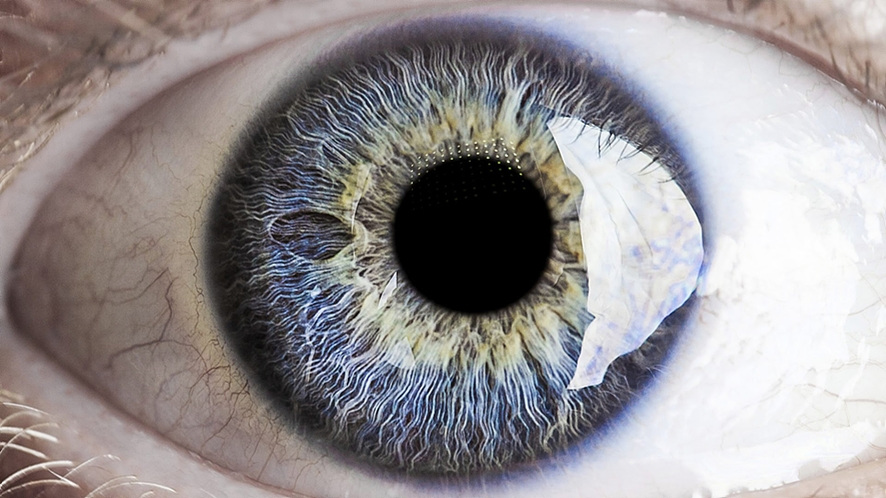 하나의 눈동자를 확대하여 보여주고 있다. 검정색 동공 주위로 푸른색 눈동자와 흰자가 보인다.