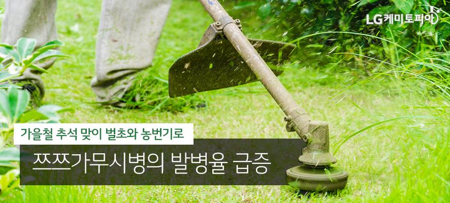 가을철 추석 맞이 벌초와 농번기로 쯔쯔가무시병의 발병율 급증(풀밭을 제초기로 정리하고 있다.)