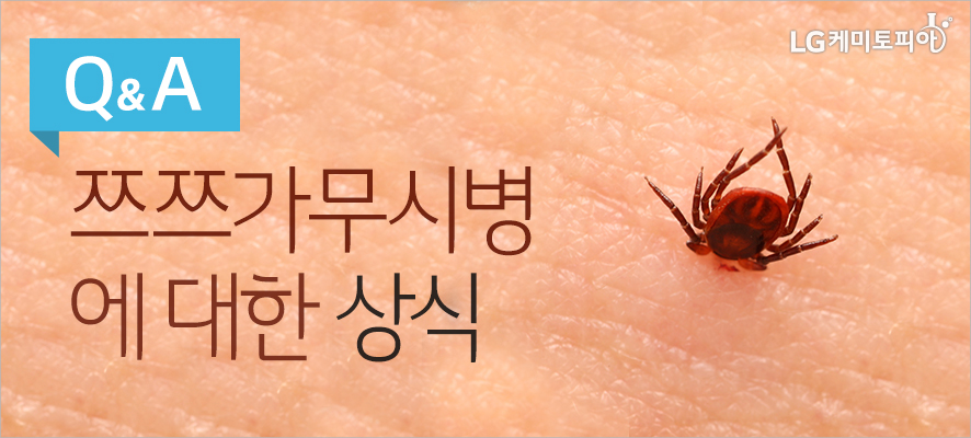 Q&A 쯔쯔가무시병에 대한 상식(사람 피부 위에 진드기가 죽어있다.)