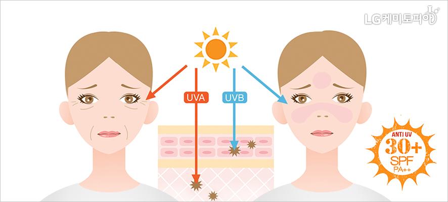 자외선 차단제 사용 유무에 따른 얼굴 피부의 차이를 보여주는 그림