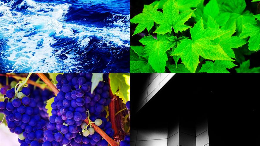 (좌측위)파란색 바다, (우측위)초록색 잎사귀, (좌측아래)보라색 포도송이가 천장에 매달려 있다. (우측아래)검은색 건물 외벽 일부