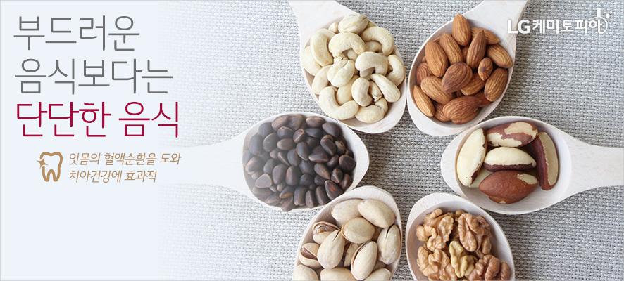 부드러운 음식보다는 단단한 음식! 잇몸의 혈액순화을 도와 치아건강에 효과적(견과류가 종류별로 수저에 담겨있다.)