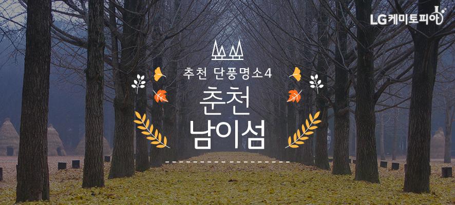 추천 단풍명소4. 춘천 남이섬