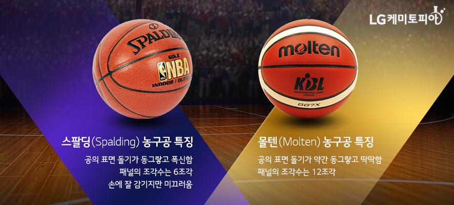 스팔딩(Spalding) 농구공 특징[공의 표면 돌기가 동그랗고 폭신함 패널의 조각수는 6조각 손에 잘 감기지만 미끄러움]과 몰텐(Molten) 농구공 특징[공의 표면 돌기가 약간 동그랗고 딱딱함, 패널의 조각수는 12조각]