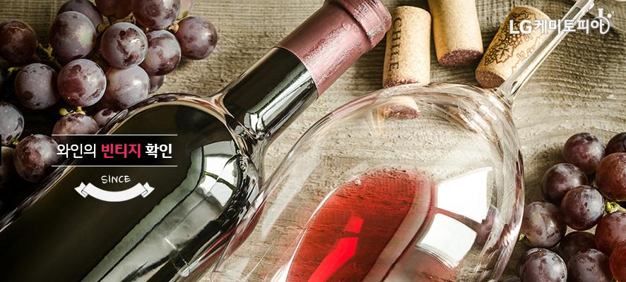 와인의 빈티지 확인(적색 포도와 와인병과 와인잔이 있다.)