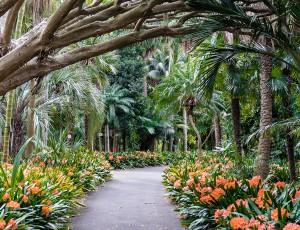 식물원 실내 모습