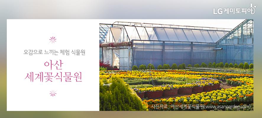 오감으로 느끼는 체험 식물원 아산세계꽃식물원