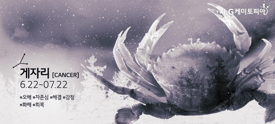 게자리 [ Cancer ] 06.22~07.22 #오해 #자존심 #해결 #감정 #화해 #회복