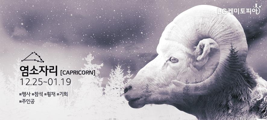 염소자리 [ Capricorn ] 12.25~01.19 #행사 #참석 #횡재 #기회 #주인공