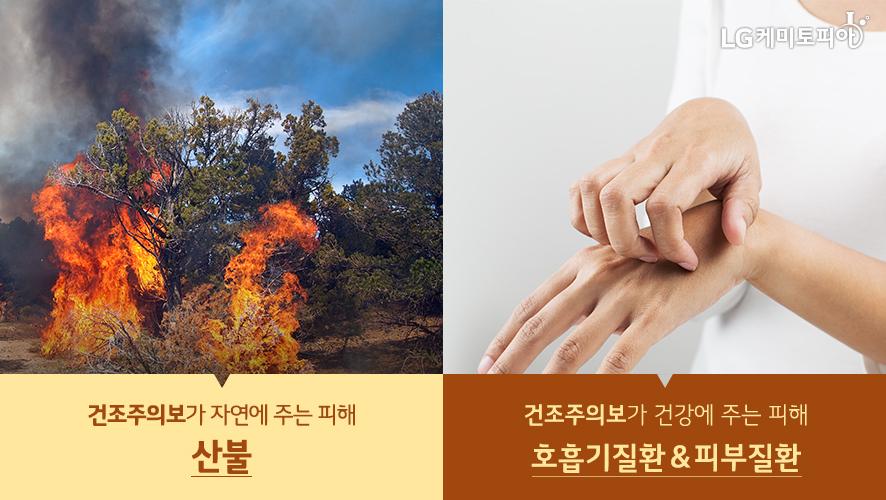 건조주의보가 자연에 주는 피해 산 불과 건조주의보가 건강에 주는 피해 호흡기질환 &피부질환