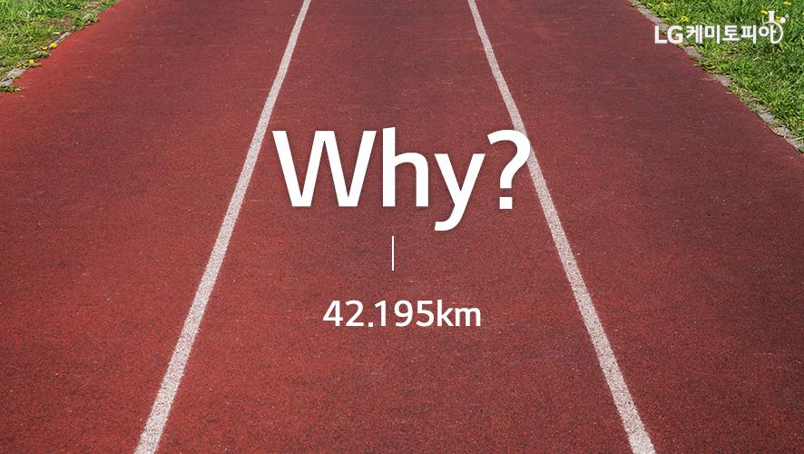 Why? 42.195km