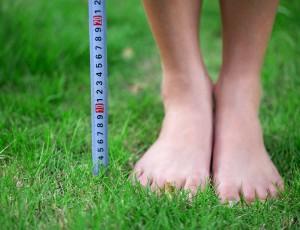 풀밭에 맨발이 보이고 그 옆으로줄자가 나란히 서있다.