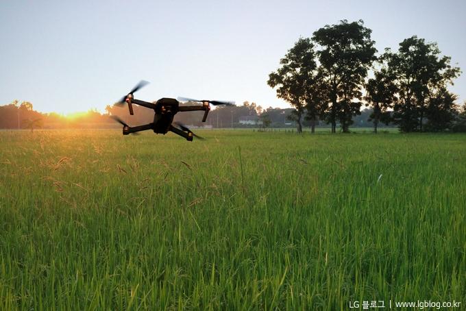 논 밭 위로 드론이 날고 있다. (LG 블로그 / www.lgblog.co.kr)
