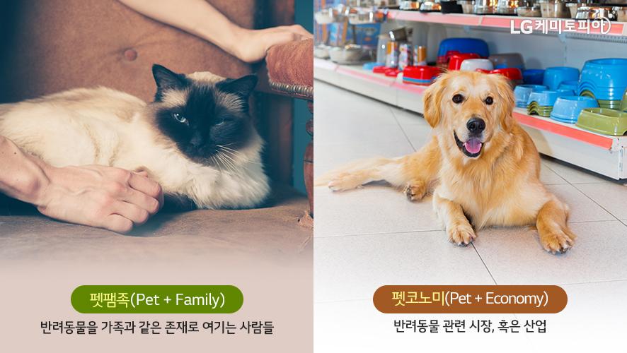 펫팸족(Pet + Family) 반려동물을 가족과 같은 존재로 여기는 사람들 펫코노미(Pet + Economy) 반려동물 관련 시장, 혹은 산업