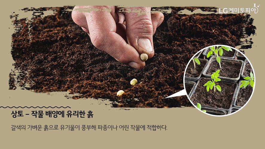 상토 – 작물 배양에 유리한 흙: 갈색의 가벼운 흙으로 유기물이 풍부해 파종이나 어린 작물에 적합하다.