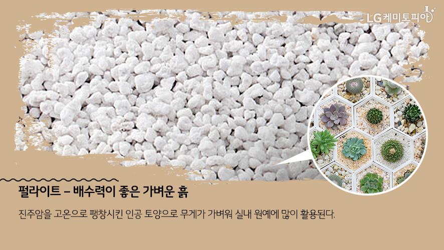 펄라이트 – 배수력이 좋은 가벼운 흙: 진주암을 고온으로 팽창시킨 인공 토양으로 무게가 가벼워 실내 원예에 많이 활용된다.