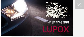 레드램프의 빛을 견디다 LUPOX