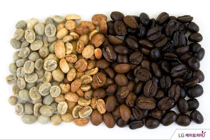 왼쪽의 녹색 생두부터 점점 어두워지는 커피콩