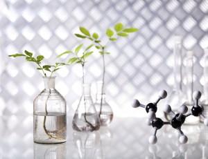 지구를 살리는 화학의 힘! 친환경 소재