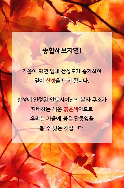 종합해보자면! 가을에는 잎이 산성을 띄게 됩니다. 산성에 안정된 안토시아닌의 분자 구조가 지배하는 색의 붉은색이므로 우리는 가을에 붉은 단풍잎을 볼 수 있을 것입니다.